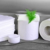Waxing Disposables and Supplies Category Image